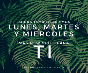 New Suite-Abrimos LMX-6